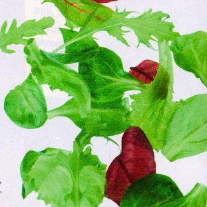 Листовые салаты