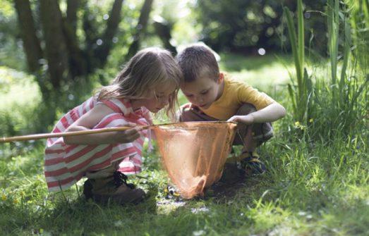 Чем можно заинтересовать ребенка: 12 советов, которые помогут пробудить любопытство
