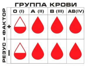 Определение пола ребёнка по группе крови
