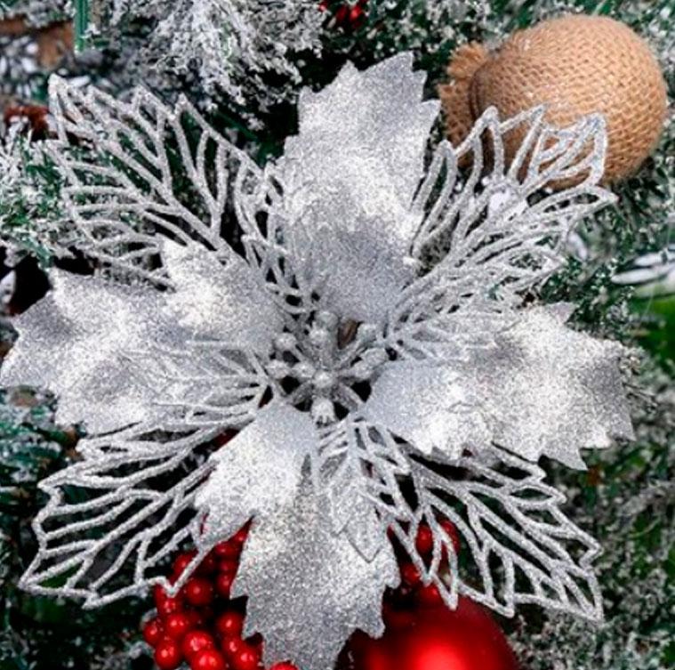 Рождественские цветы на Новый год 2021