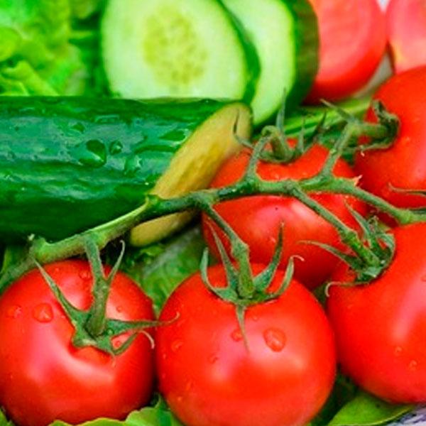 день-на-огурцах-и-помидорах